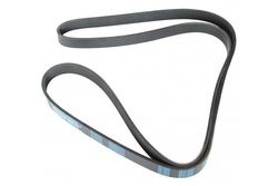 MAPCO 261800 V-Ribbed Belt