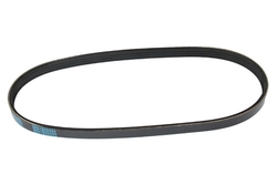 MAPCO 240665 V-Ribbed Belt