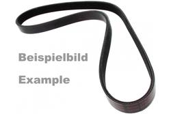 MAPCO 261275 V-Ribbed Belt