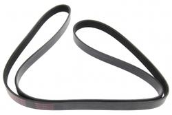 MAPCO 261840 V-Ribbed Belt
