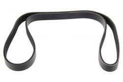 MAPCO 261250 V-Ribbed Belt